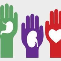España líder Mundial nuevamente, por 26 años consecutivos, en trasplantes y donación de órganos