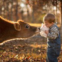 Eduquemos en el respeto al resto de animales